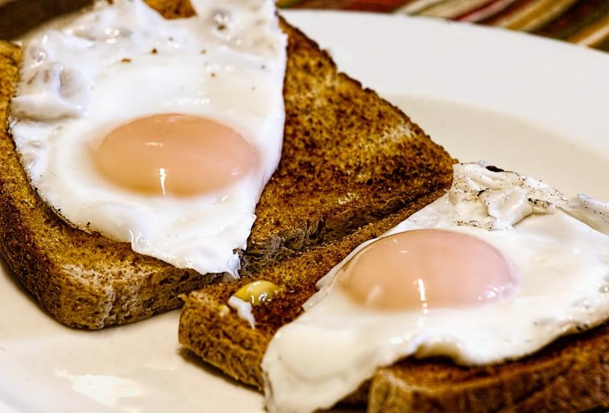 fried-eggs-456351_1280